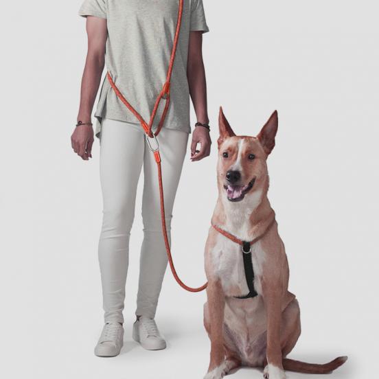 Harnais Walker - orange