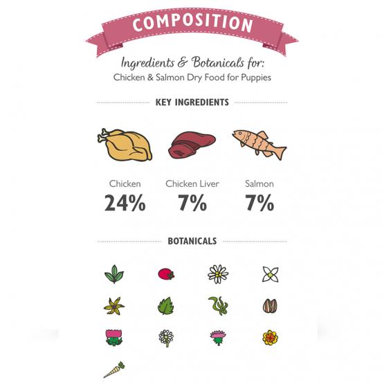 Croquettes pour chiot naturelles et saines au poulet et saumon -Klep's