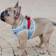 Harnais pour chien en jean Denim