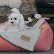 Panier pour chien Loft - rose corail