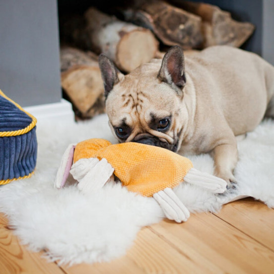 Peluche douce pour chien Ane Bax