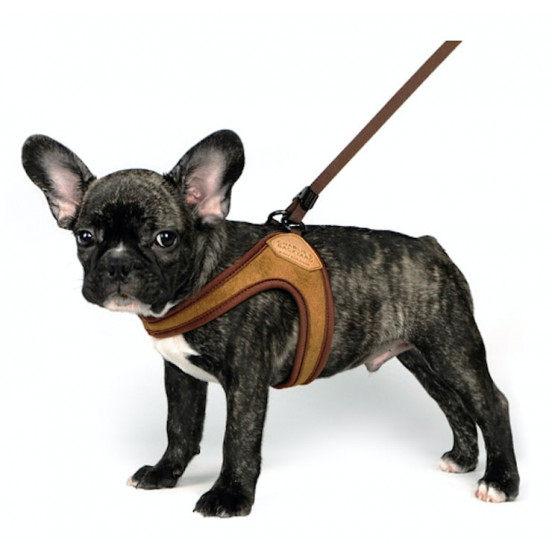 Harnais pour chien Easy pratique et confortable - marron