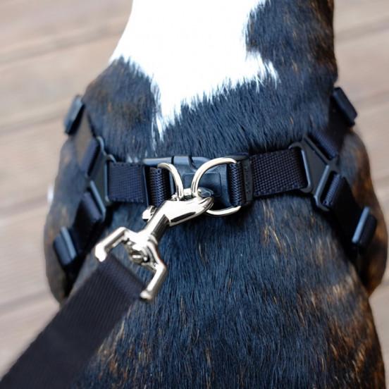 Harnais pour chien confortable - marron