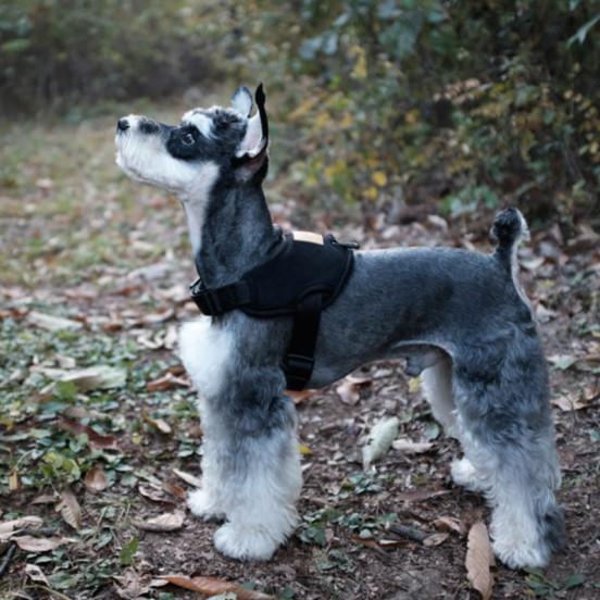 Harnais pour grand chien confortable Above - noir