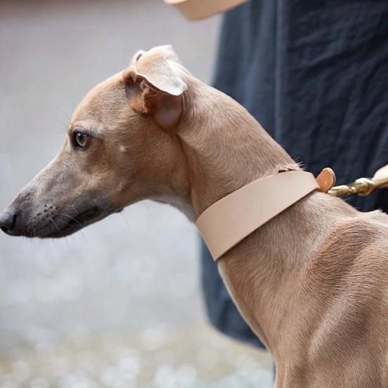 Collier en Cuir Large pour chien lévrier - naturel