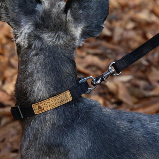 Collier pour chien fin et léger - noir