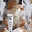 Dentifrice pour chien naturel et efficace - Vegan