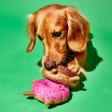 Peluche pour chien Donut en Crochet Fait Main & Fair Trade - rose