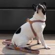 Harnais pour chien Coton et Cuir Facile à Attacher - Dessin Génie - vieux rose