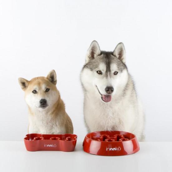 Gamelle Anti-glouton pour chien ronde - rouge