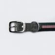 Collier pour chien en Cuir et Sangle Rayée Tricolore Fin et Souple - gris