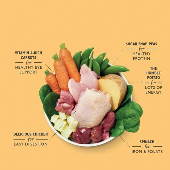 Boîte de pâtée complète Sans Céréale à la Viande Fraîche – Poulet & Légumes